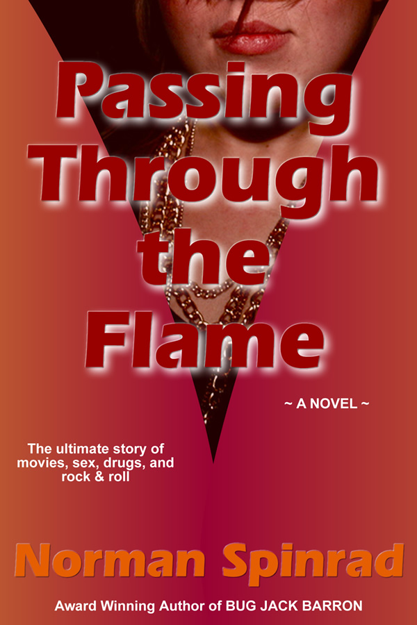 Passing Through the Flame, by Norman Spinrad